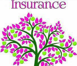Serenity Insurance
